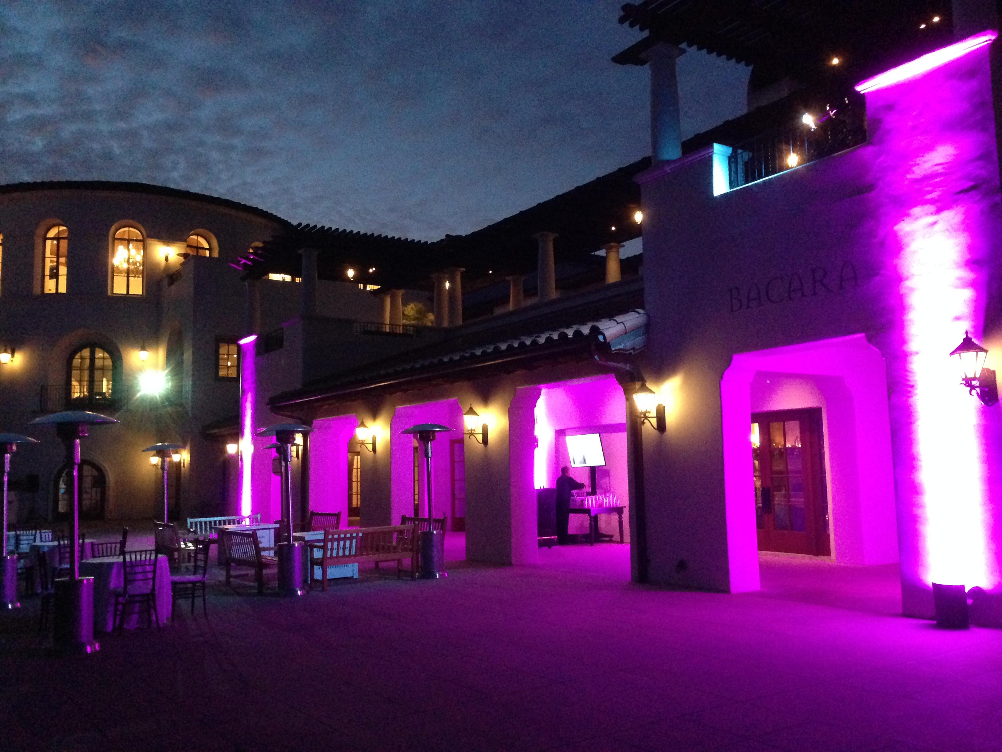 Purple L E D Outdoor Uplighting